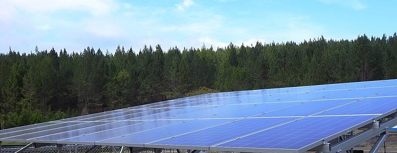 Smurfit Kappa Colombia pone en marcha su primera iniciativa de energía solar