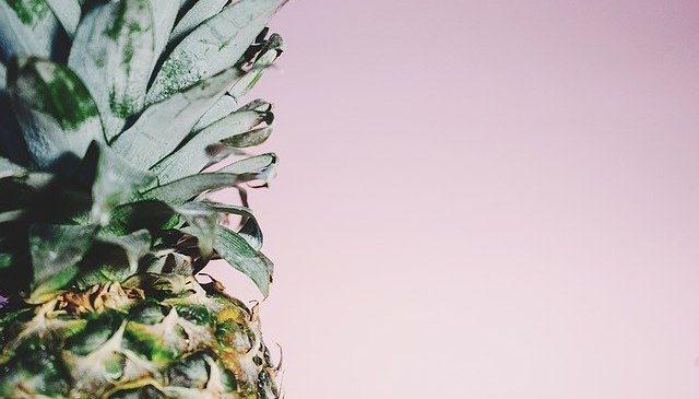 Colombia exportará su primer cargamento de piña a Canadá