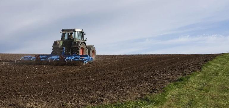 Informe sector Agropecuario, alimentos y bebidas