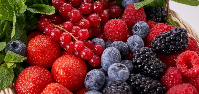 Informe exportaciones de berries